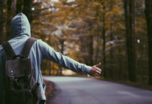 Hitchhiker-startups