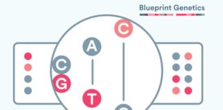 Blueprint-Genetics