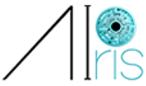 Airis Vision