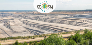 Ecosia-search-engine