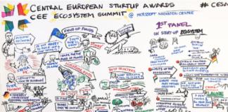 CESA-CEE-Report-2018