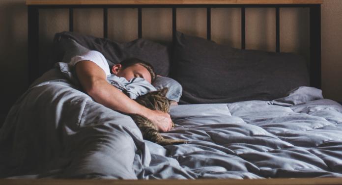 founders-sleep