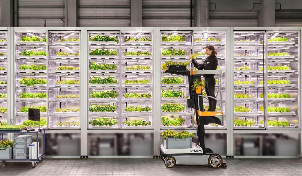 Berlin-based Infarm raises €144 million during pandemic to grow largest urban vertical farming network in the world