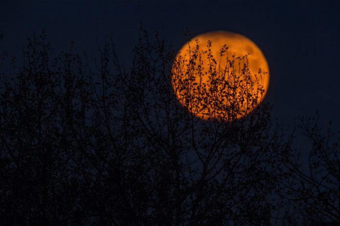 halloween-bloodmoon-zagreb