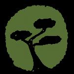 Bonsai Systems GmbH