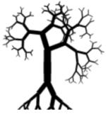 Mangrove Reviews