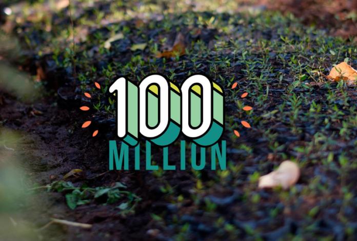 Ecosia-100m-milestone