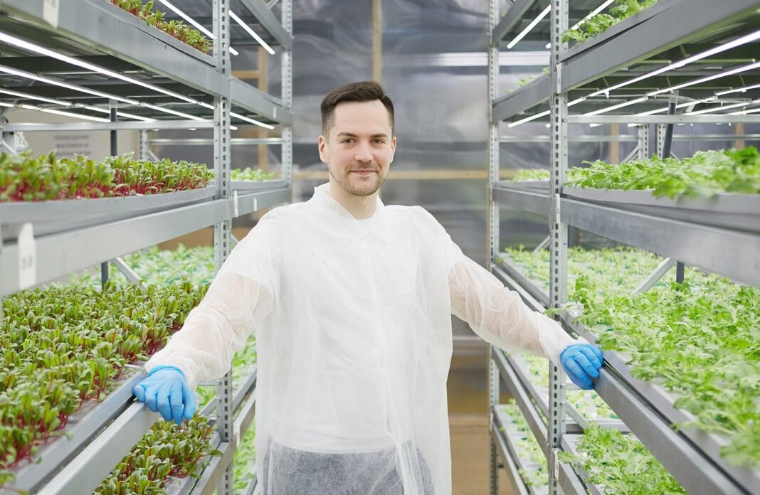 """Everyone can become a city farmer"": Interview with iFarm's co-founder and CEO Max Chizhov"