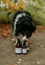 WAP dog care products