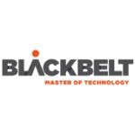 BlackBelt Holding