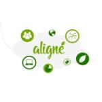 Aligne